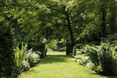 Лекции по декоративному садоводству 9 марта — Сайт Коломны, новости Коломны, Коломна Онлайн