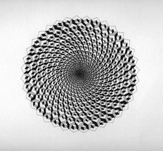 Ant Macari, Accidental Fraser spiral, 2010, Courtesy Northern Gallery for Contemporary Art, http://www.thisistomorrow.info/viewArticle.aspx?artId=783=Ant%20Macari:%20Get%20out%20and%20troop%20the%20shape%20of%20a%20void