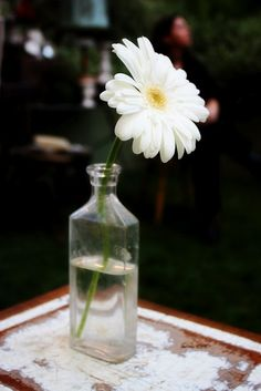 daisy wedding  Single Gerberas for smaller tables?