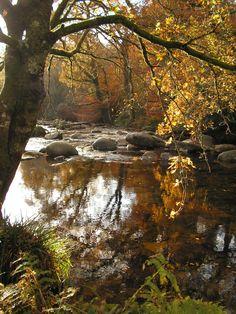 Dartmeet in autumn (where the rivers converge) on Dartmoor.