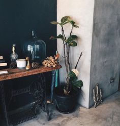 Dreamy vibes via @shoplcd. I'm really into the contrasting wall colors and the tabletop accessory situation. ✨✨