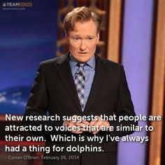 Dolphins and Conan