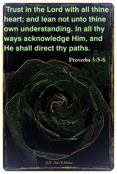 Trust in the Lord with all thine heart; and lean not unto thine own understanding.   In all thy ways acknowledge him, and he shall direct thy paths. ~ Proverbs 3:5-6 KJV