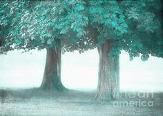 Blue Mind Treeness for Two by Hal Halli Meditation, Trees, Mindfulness, In This Moment, Wall Art, Blue, Beauty, Tree Structure, Beauty Illustration