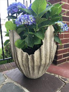 Diy Cement Planters, Cement Flower Pots, Cement Garden, Cement Art, Stone Planters, Concrete Leaves, Concrete Pots, Concrete Crafts, Fairy Garden Plants