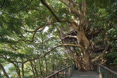 Kusukusu is the result of collaborative work between Kobayashi and Hiroshi Nakamura of NAP Architects
