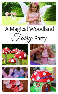 A magical woodland f