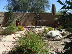 desert landscape ideas for small yards - Google Search