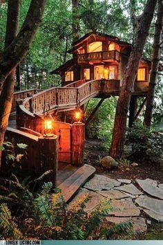Awesome Treehouse!