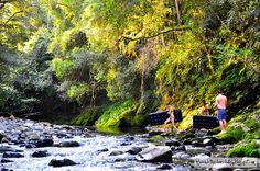 i would so love to go to Australia, River Wild - Barrington Tops Australia