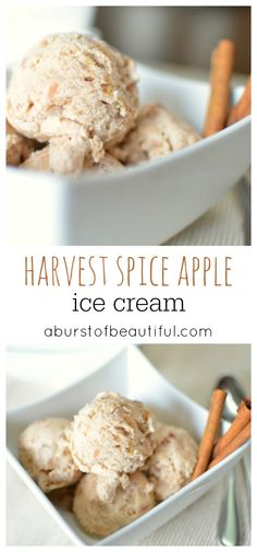 Coffee Ice Cream By Season With Spice Recipe — Dishmaps