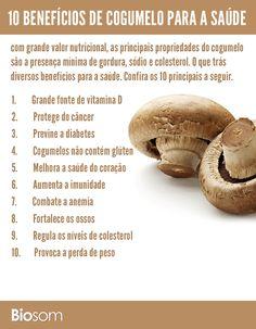 Adicione cogumelos à sua dieta sem glúten e emagreça com saúde. Cogumelos são totalmente desprovidos de glúten e ricos em fibras, o que ajuda a perder peso. Veja mais aqui. #cogumelo #alimento #alimentação #alimentaçãosaudável #bemestar #saúde