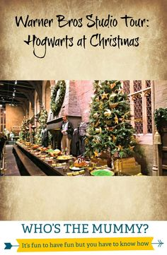So what can you expect on a day at the Warner Bros Studio Tour?