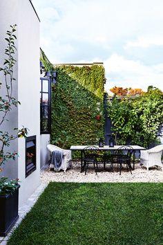 Jardín con césped.