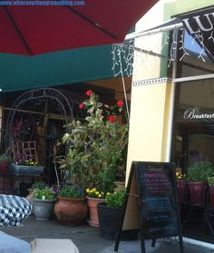 Restaurant Review  Baci Trattoria, Vero Beach, FL
