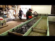 How to make a Trout. Aquaponics Fish, Hydroponics, Fish Breeding, Farm Business, Small Farm, Trout, How To Make, Youtube, Ideas