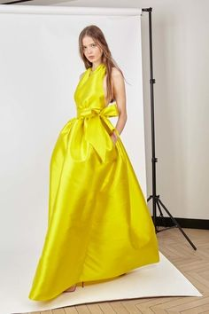 See the complete Alexis Mabille Resort 2017 collection.