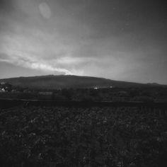 Un sommelier sul vulcano:  Federico Graziani corona un sogno: produrre un vino tutto suo. Tra le vigne e i profumi dell'Etna   /   A sommelier on the volcano  Graziani fulfils a dream: producing his own wine. Among the vineyards and the scents of Etna