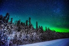 Aurora Borealis; Fairbanks Alaska