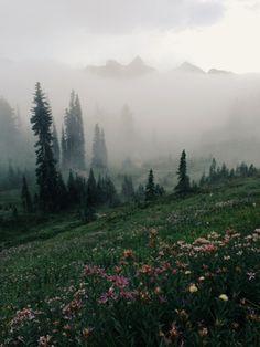 Mount Rainier National Park, Kevin Russ