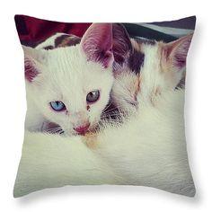 "Kittens Feeding Throw Pillow 14"" x 14"""