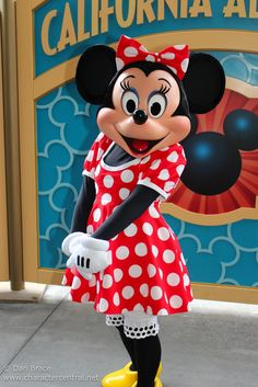 Minnie Mouse is the most common Disney character in the Disney Parks after Mickey Mouse and Donald Duck. Minnie Mouse Costume, Mickey Minnie Mouse, Disney Mickey, Disney Parks, Disney Pixar, Walt Disney, Disney Wiki, Disney Fun, Disney Magic