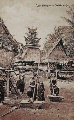'Rijst stampende Batakmeisjes' Ulos Batak, Maluku Islands, Philippine Art, Dutch East Indies, Tiki Room, Javanese, Environmental Art, Vintage Pictures, Art And Architecture