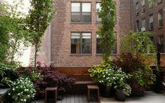 aménagement de petit jardin en ville avec un canapé d'angle et plantes