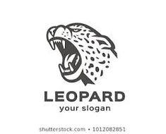 Image result for leopard logo Jaguar, Slogan, Image, Cheetah