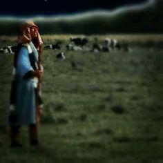 Day Seventeen - Prophet