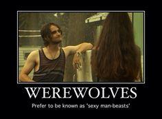 Hemlock Grove & True Blood Memes : Photo
