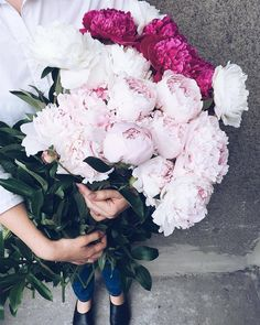 New post on pinkwinged Peonies Bouquet, My Flower, Floral Wreath, Wreaths, Beauty, Decor, Roses, Nice, Flowers
