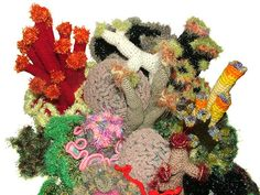 Crochet coral reef by Renate Kirkpatrick
