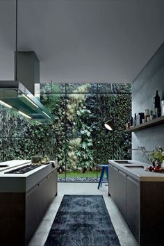 Modern kitchen looking out into a gorgeous vertical garden. Varenna by Poliform Small Modern Kitchens, Modern Kitchen Design, Interior Design Kitchen, Cool Kitchens, Minimal Kitchen, Stylish Kitchen, Modern Design, Kitchen Paint, Home Decor Kitchen