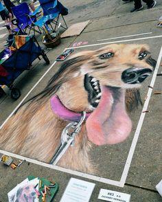 3d Street Art, Chalk Art, Graffiti, Dogs, Animals, Urban Art, Animales, Animaux, Pet Dogs