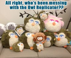 Something's fishy around here...or rather, owl-y....   #squishable #plush #owl