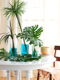 tropical centerpiece ideas | ... Table : Tinted water and tropical foliage make a dramatic centerpiece