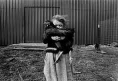 """A 5-year-old girl shields her face for a moment from a gust of wind with her favorite chicken, Steve, after running to catch him for 10 minutes on her father's farm in Deary, Idaho. """"One time I squished a chicken so hard that an egg fell out,"""" she said."""