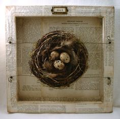 """This is created using the back  of a 12"""" x 12"""" canvas! covered with old pages from a birds of America book"""