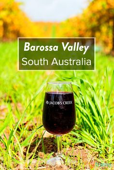 11 food & wine experiences to have in the Barossa Valley region of South Australia