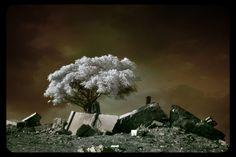 Under Bronze Sky by gilad on DeviantArt