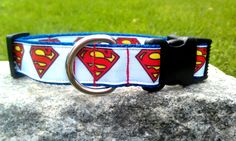 Man Of Steel 1 Inch Width Dog Collar by WillyWoofs on Etsy, $16.00