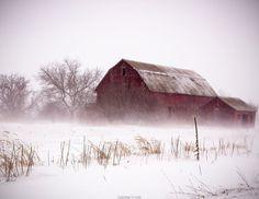 Winter Red Barn Farm Photography Winter by Arkonacreekcreations
