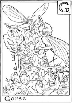 http://fairycoloringpages.blogspot.com/search/label/FLOWER FAIRIES