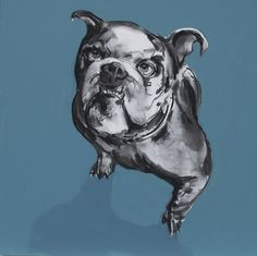 Bulldog, charcoal and oil on canvas, Gerard Byrne, www.gerardbyrneartist.com