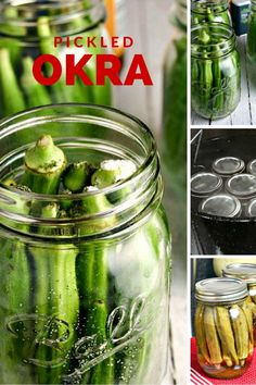 Slightly sweet, these crispy pods are the perfect garnish for salads, burgers, and even pork barbecue or fried chicken. Canning Pickled Okra, Pickled Okra Recipes, Canning Recipes, Sweet Pickled Okra Recipe, Canning Pickles, Pickled Garlic, Pickles Recipe, Pickled Eggs, Canning 101