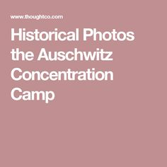 Historical Photos the Auschwitz Concentration Camp