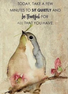 Today, take quite a few minutes to sit quietly and be thankful for what you have. Quotable Quotes, Wisdom Quotes, Me Quotes, Motivational Quotes, Inspirational Quotes, Bird Quotes, Motivational Thoughts, Crush Quotes, Meaningful Quotes