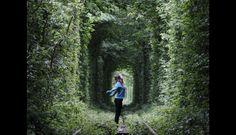 El túnel del amor, Kleven, Ucrania. (Foto: huffingtonpost.es)