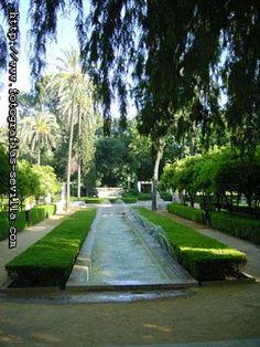 Sevilla Parque de María Luisa El parque no se incorpora realmente a la ciudad hasta que Sevilla asume la gestión de la Exposición Iberoamericana de 1929. Fue en esa época, principios del siglo XX, cuando el Ayuntamiento encarga al ingeniero francés Forestier la reconstrucción y remodelación del parque, que sería el espacio principal de dicha exposición.
